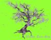 Windy lilac tree