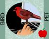 Handheld Cardinal