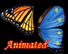 BUTTERFLY ANIMATED