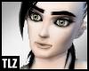 [TLZ]SilverStreak Skin L