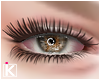|K Volume Lashes
