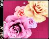 . Pip | Flower Crown