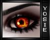 ~Y~Orange Eyes