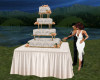 !Wedding Cake & Pose