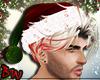 *BW* Christmas Hat