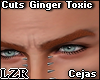 Cuts Ginger Toxic
