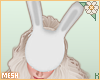 K|Mesh*BunnyMask