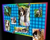 Pet Bill Board