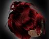 (LL)XKS BloodRed Akinari