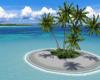 !! little island.