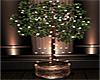~PS~ Omnia Plant