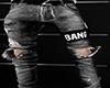 Bang Ripped