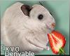 Hamster 2 :ᚠ: Drv