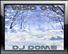DJ LIGHT Winter Dome