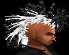 (AL)BlackNWhite Mohawk