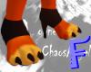 Anyskin Heel Paws
