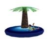 Floating Palmtree