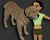 Dog AVI F