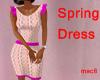 NetV1-Dress