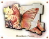 Butterfly frame 3D