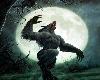 (BR) Werewolf