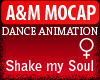A&M Dance *Shake my Soul