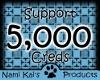 NSK support 5k
