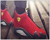 Ferrari 14's