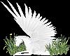 Pegasus Avatar