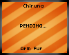 [Chi]Sunburst Arm