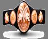 WWE Tag Team Title