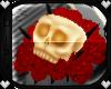 [𝓓]FallenSkull w/Rose