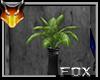 [FX] Plant