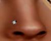 Nose P