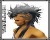 Mohawk-Black Hair