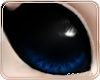 💡Urvi Eyes | Blue