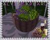 Wine Grapes Basket