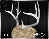 [Rev] Antlers Blanc |MF