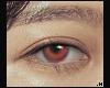 ucis eye \ tied2u