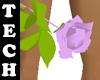 Pink Rose (SR)