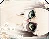 [Pets] Fudge | Rickenna
