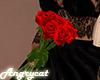 Roses Boquet