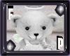 *FP* White Bear Pet