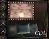 !C* Elegance Bed
