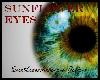 >Sunflower Eyes<