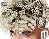 Pretty Boi Curls - Ombre