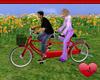 Mm Tandem Couples Bike