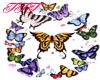 TTT Butterfly Ring