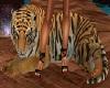 gio tiger amico fidato 2