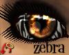 Wild.Eyes Zebra (f)